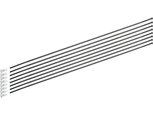 DT Swiss Spoke Kit für ARC ARC 1100 Dicut 48 mm DB